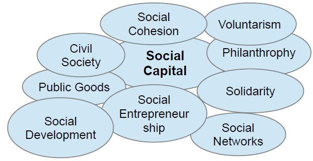 Why Discussions On What Social Capital Is Often End In The Desert